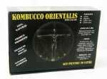 Kombucco Orientalis